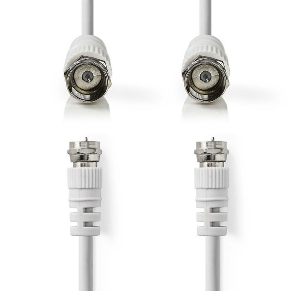 F-Type Leads